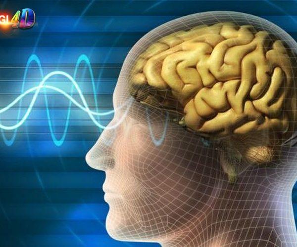 """Terobosan Besar, Riset Temukan """"Mesin Kesadaran"""" di Dalam Otak Monyet"""